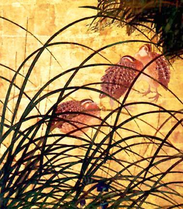 Quail and Autumn Grasses