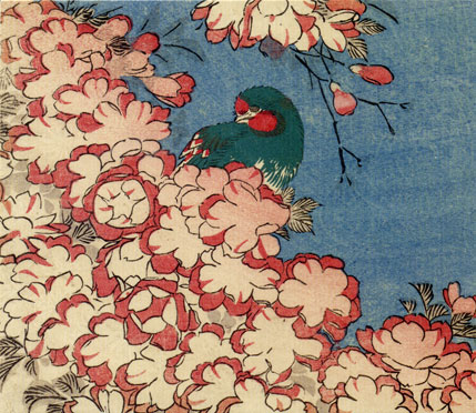 Double Cherry Blossoms and Green Bird