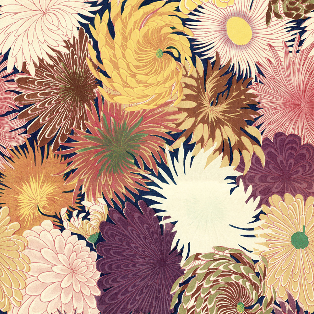 Chrysanthemums Gift Wrap Sheet