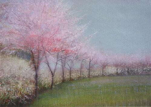 Line of Blossom