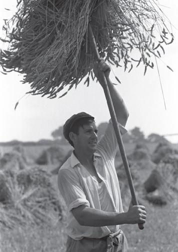 John Govier, Beaford