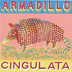 A is for Armadillo, short, stout and round