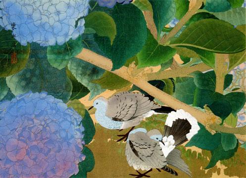 Hydrangea and Pigeons, Midsummer