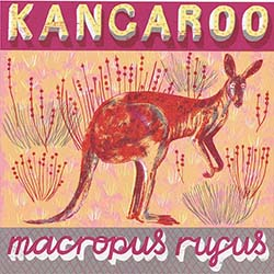 K is for Kangaroo, taking hop, skip and bound