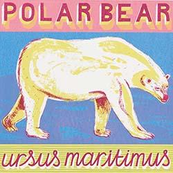 P is for Polar Bear, striding through snow