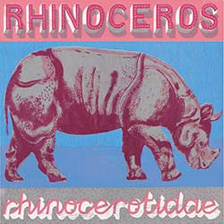 R is for Rhino, with skin of tough leather