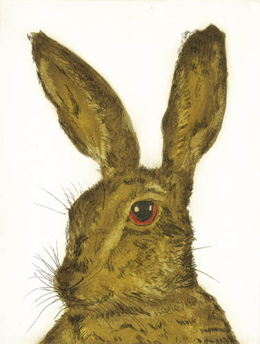 Hare Professor
