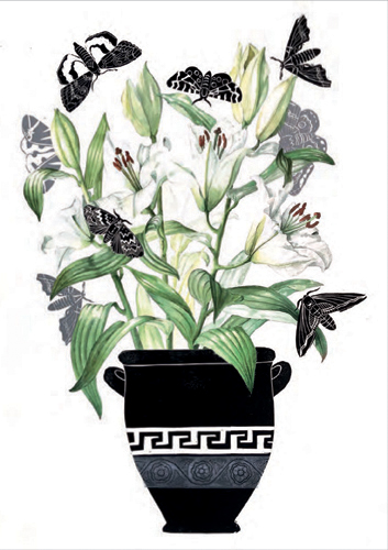 Lilies and Moths