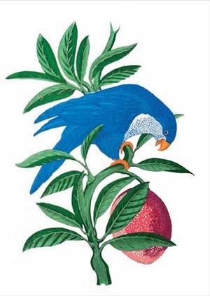 Blue Lorikeet