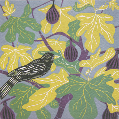 Blackbird and Figs