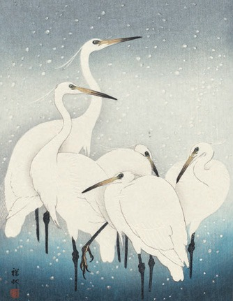 CHRISTMAS CARD PACK (5) Herons in Snow