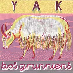 Y is for Yak, long mane and great might